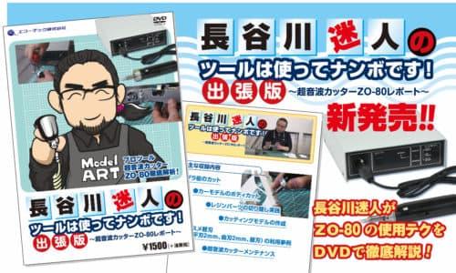 長谷川迷人DVD