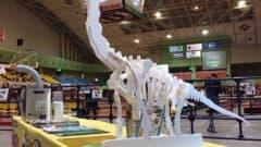超音波カッターで恐竜をつくる